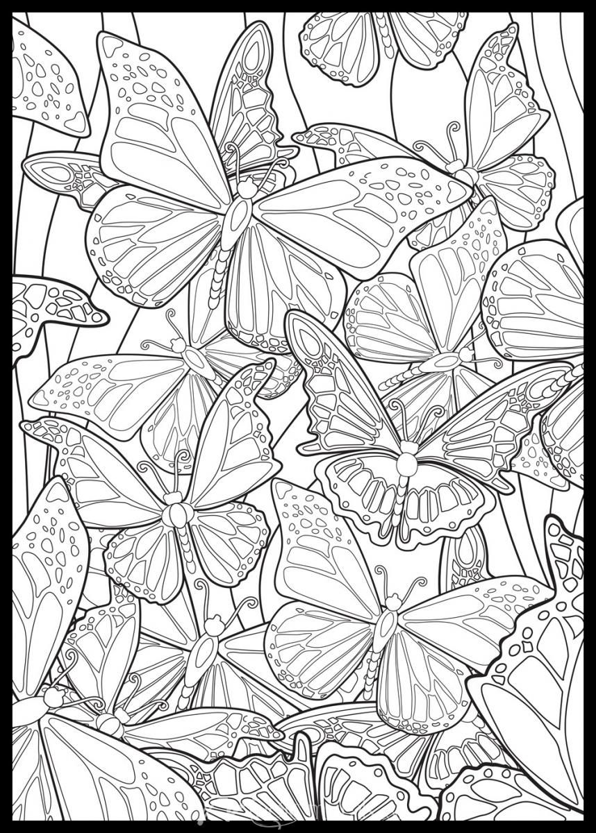 Tropical Butterflies Butterfly Coloring Page Coloring Pages Coloring Books [ 1200 x 858 Pixel ]