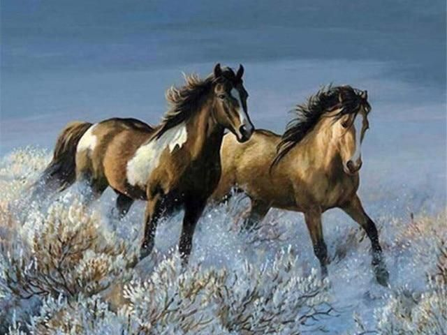 Photo of Horse DIY Paint By Number Kit Collection C – SZGD8802 / 50X40cm No Frame