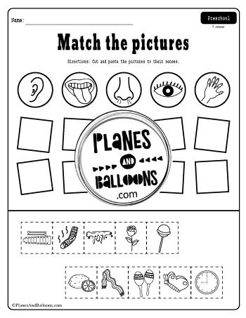 Free Printable Five Senses Worksheets Pdf For Preschool And Kindergarten In 2020 Five Senses Worksheet Senses Preschool Five Senses Kindergarten