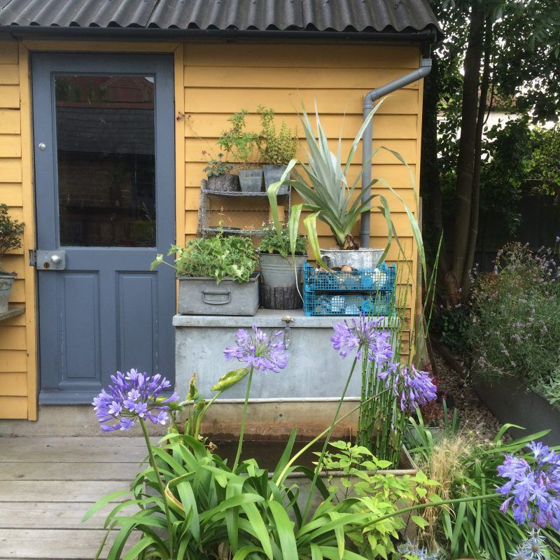 Re-vamp Your Shed - A Really Short & Easy Guide