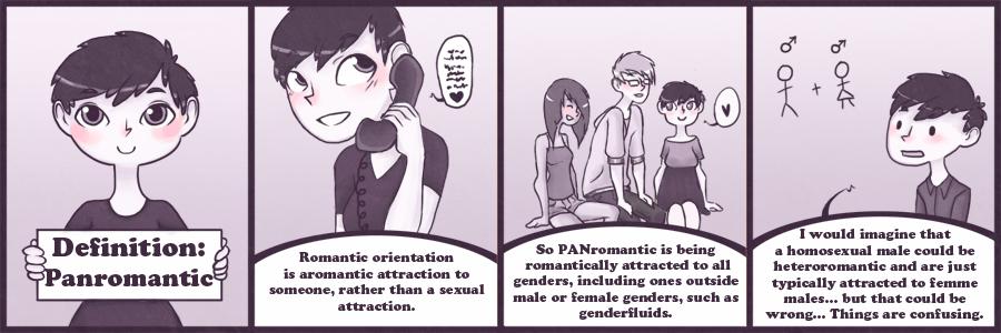 Panromantic heterosexual definition