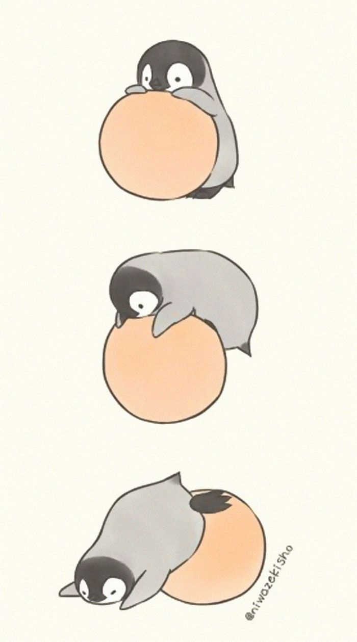 Penguin Comics Niwazekisho In 2020 Cute Animal Drawings Cute Art Cute Penguins
