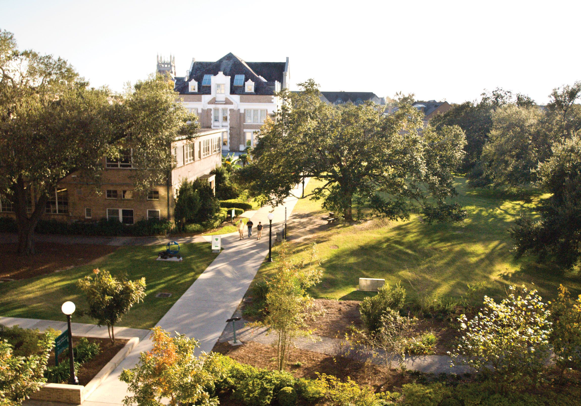 Tulane University Tulane, Tulane university, University