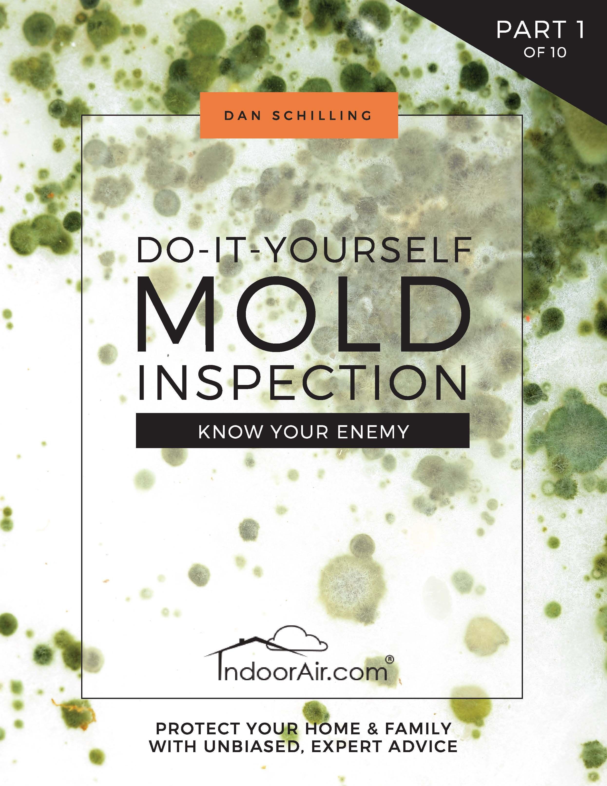 DIY Mold Inspection Part 1 Know Your Enemy Diy