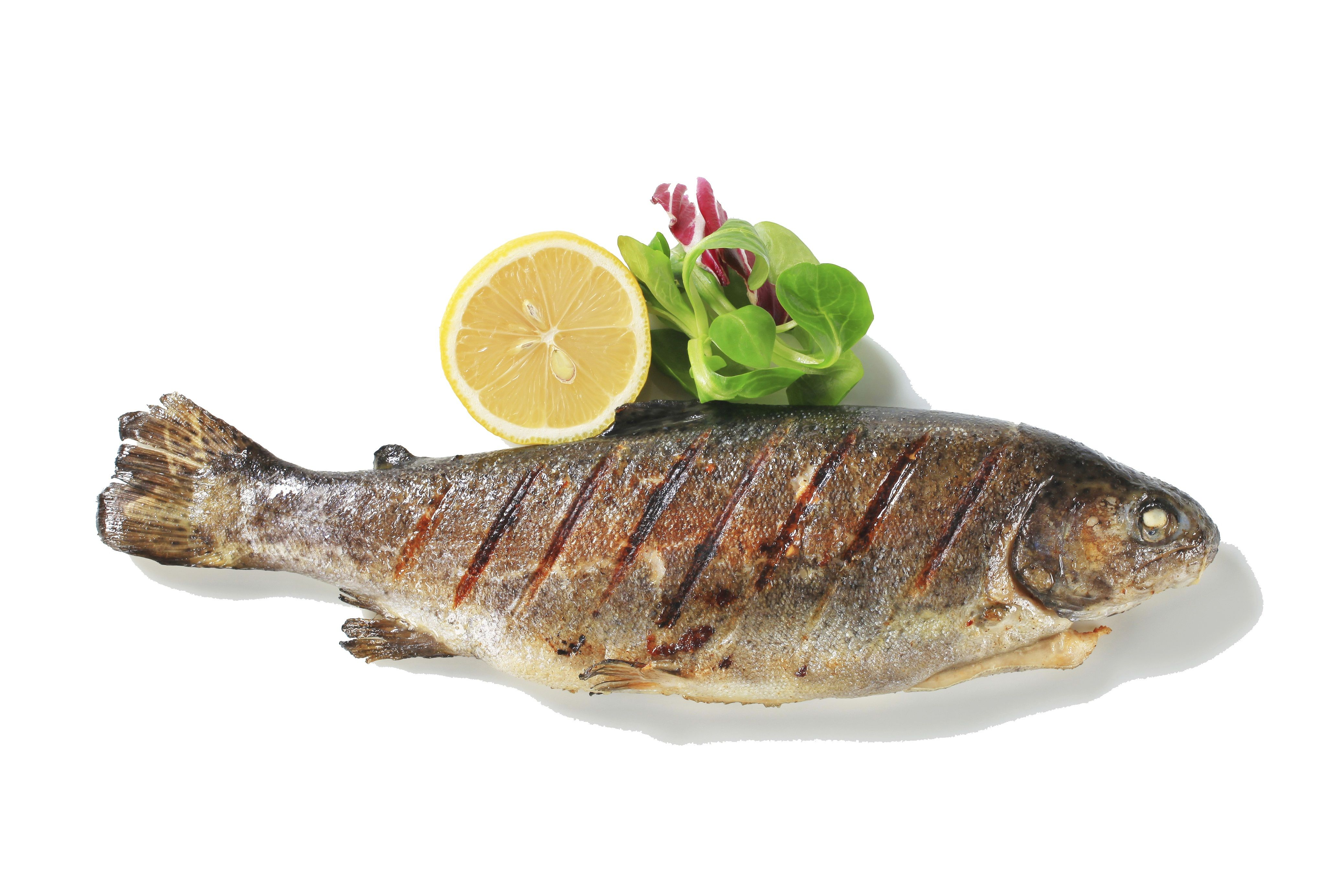 cooked_fish.jpg (4152×2768) Nutrition recipes, Food, B12