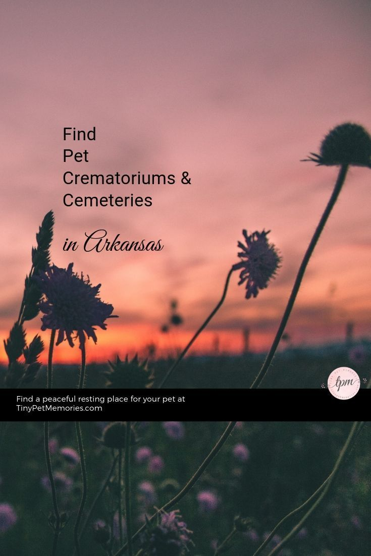 Looking For A Peaceful Way To Lay Your Petlove To Rest Find Petcemetery Or Petcrematorium Arkansas On Tinypetmemories These L Pet Cemetery Pet Lawn Pets