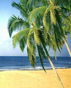 IndiaIncredibleTravel offers goa tours and goa tour packages or goa trip. Visit in goa, goa tours, goa tour package, goa trip, goa holidays, goa tourism at reasonable prices.