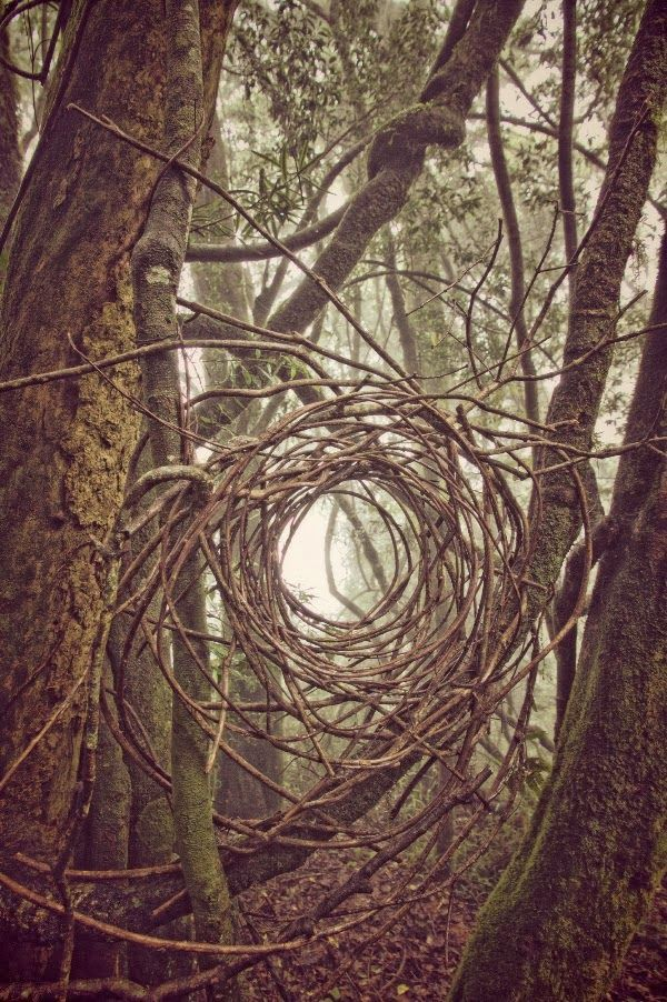 Land Art works by Simon Max Bannister, created during a week of art making in the Blyde River and Tzaneen areas of South Africa.