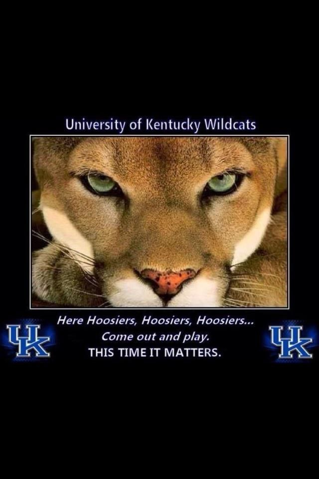 Pin By Teresa Saracino On Love Those Kentucky Wildcats Pinterest