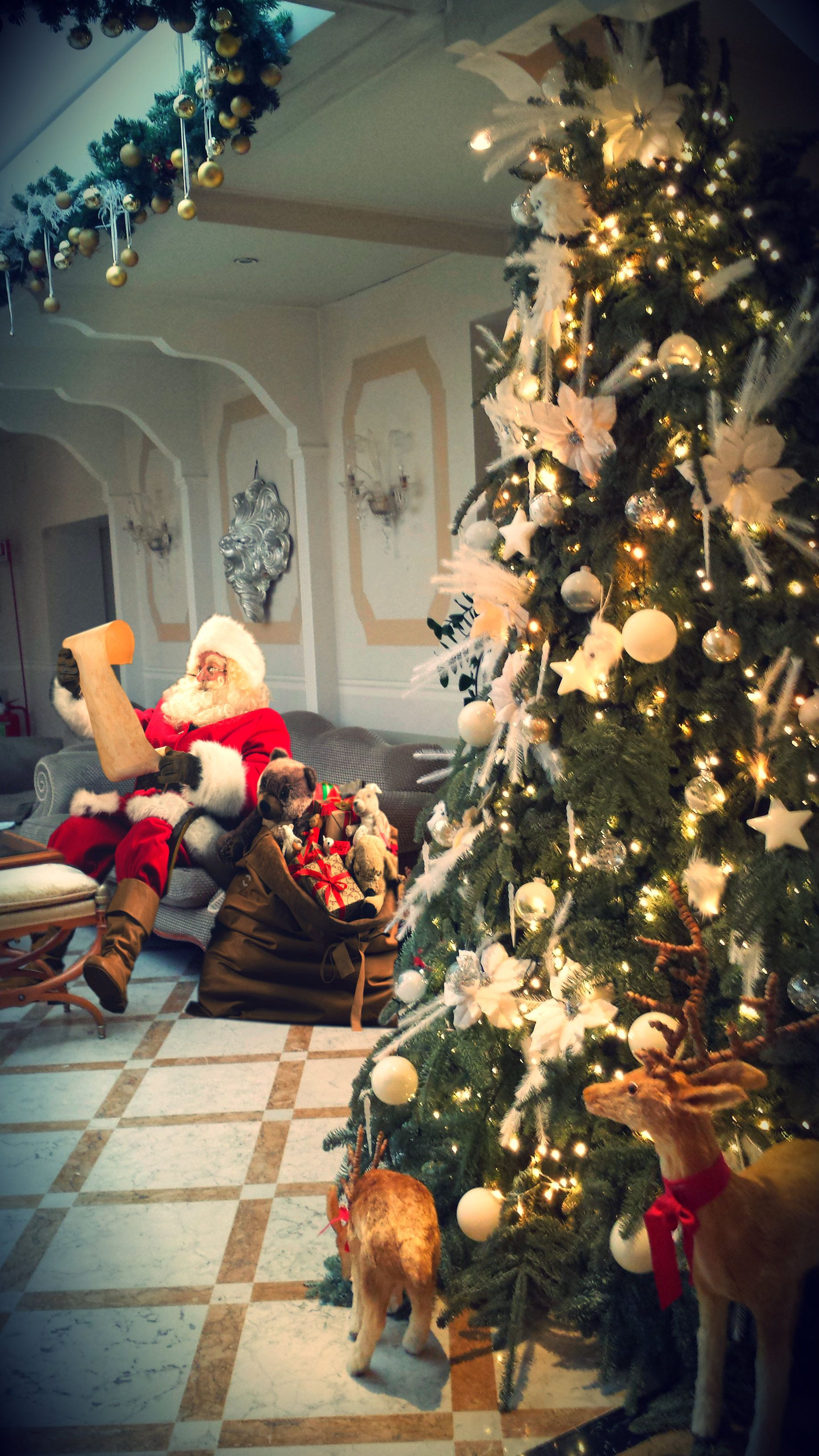 Santa Claus At The Hotel Carlton On The Grand Canal Christmas In Venice Christmas Dinner And Lunch Beautiful Christmas Trees Beautiful Christmas Christmas