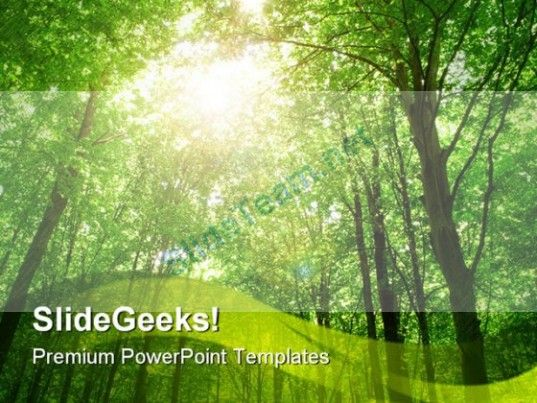 Sunlight Nature PowerPoint Template 0810 #PowerPoint #Templates - nature powerpoint template