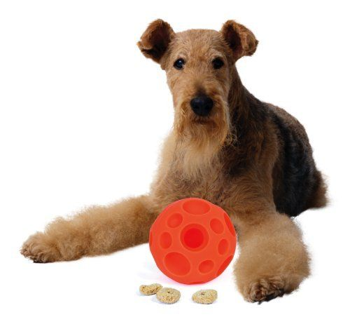 Omega Paw Tricky Treat Ball by Omega Paw