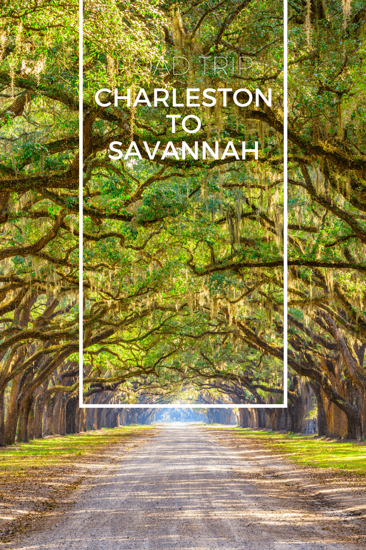 Family Friendly Road Trip Charleston Sc To Savannah Ga Family Friendly Road Trips Savannah Chat Southern Road Trips