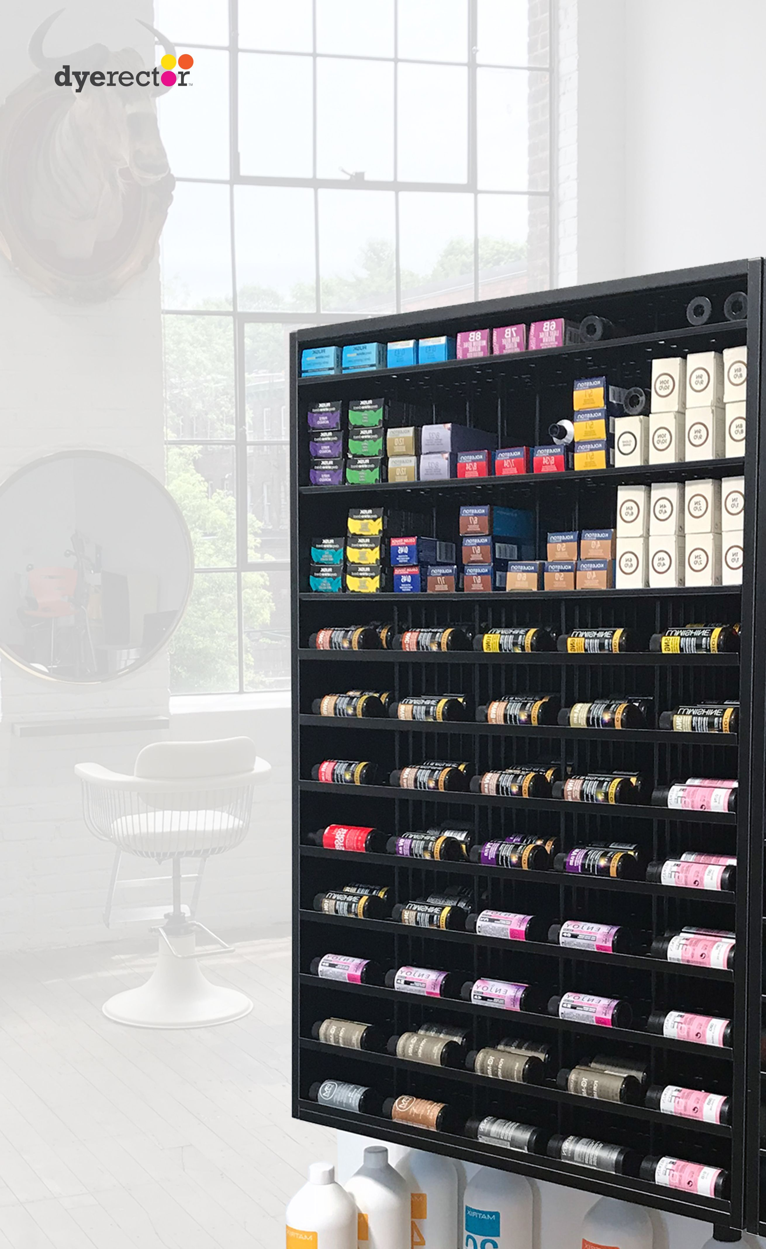 1 All In One Hair Color Organizational Storage System