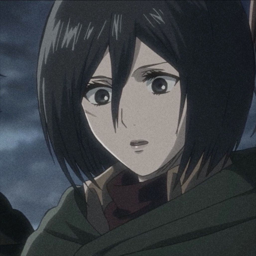 Mikasa Ackerman 𝒾𝒸𝑜𝓃 ★🌙 in 2020 Anime, Aesthetic anime