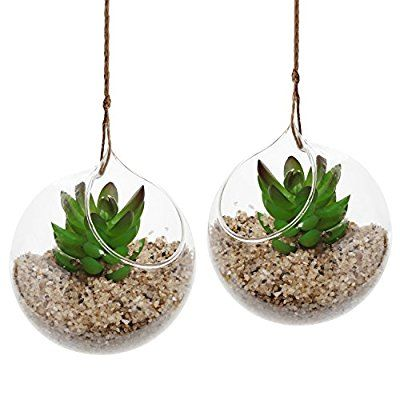 Amazon.com: Set of 2 Decorative Clear Glass Globe / Hanging Air Plant Terrarium Planter / Candle Holder - MyGift: Home & Kitchen