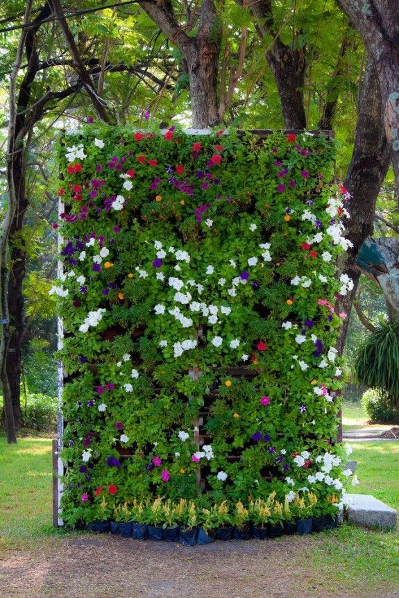 Im Handel werden Systeme für vertikale Gärten angeboten ...