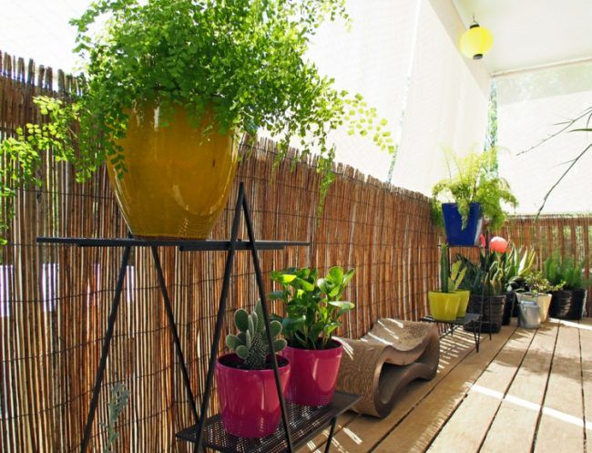 Balkon Ideen Balkongelander Sichtschutz Bambus Ideen Balkon