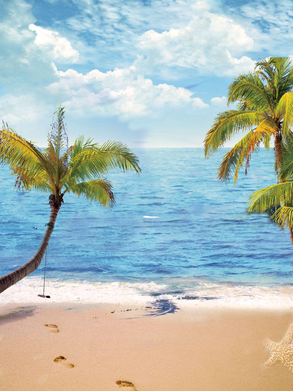 Beach Backdrop Ocean Backgrounds Blue Sky Backdrop G-491