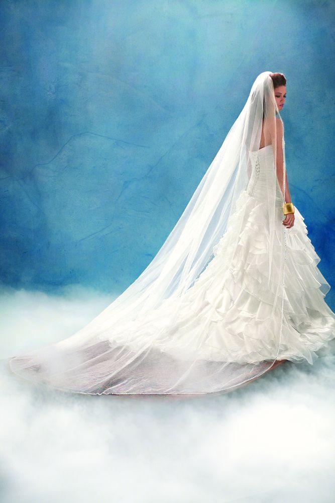 Princess Jasmine wedding veil, from the Disney\'s Fairy Tale Weddings ...