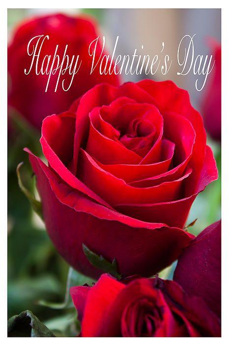 Romantic Flower Card Messages Flower Cards Romantic Flowers
