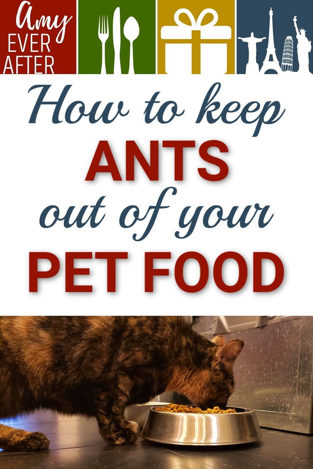 How to keep ants out of pet food without water moats or