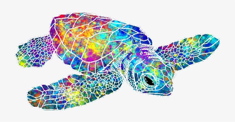 Colorful Drawing Sea Turtle Png Sea Turtle Watercolor Turtle Watercolor Sea Turtle Art