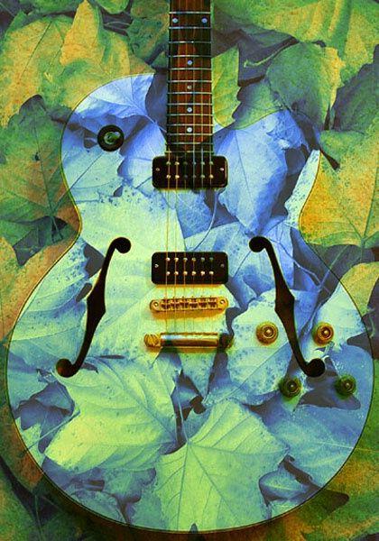 Nature Guitar