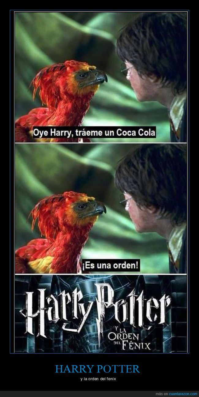 """¡Cuánta razón! / Por fin se desvela por qué se llama """"Harry Potter y la orden del Fénix"""""""