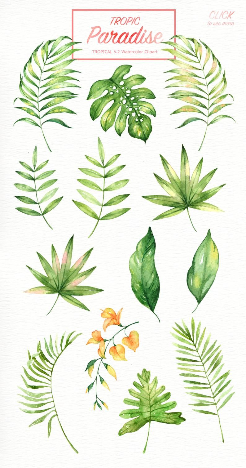 Tropic Paradise Watercolor Clipart, Tropical leaf, Watercolor flower, Leaf clipart, Wedding Clip Art, Wedding Invitation, Tropical Clipart -   18 tropical plants Watercolor ideas
