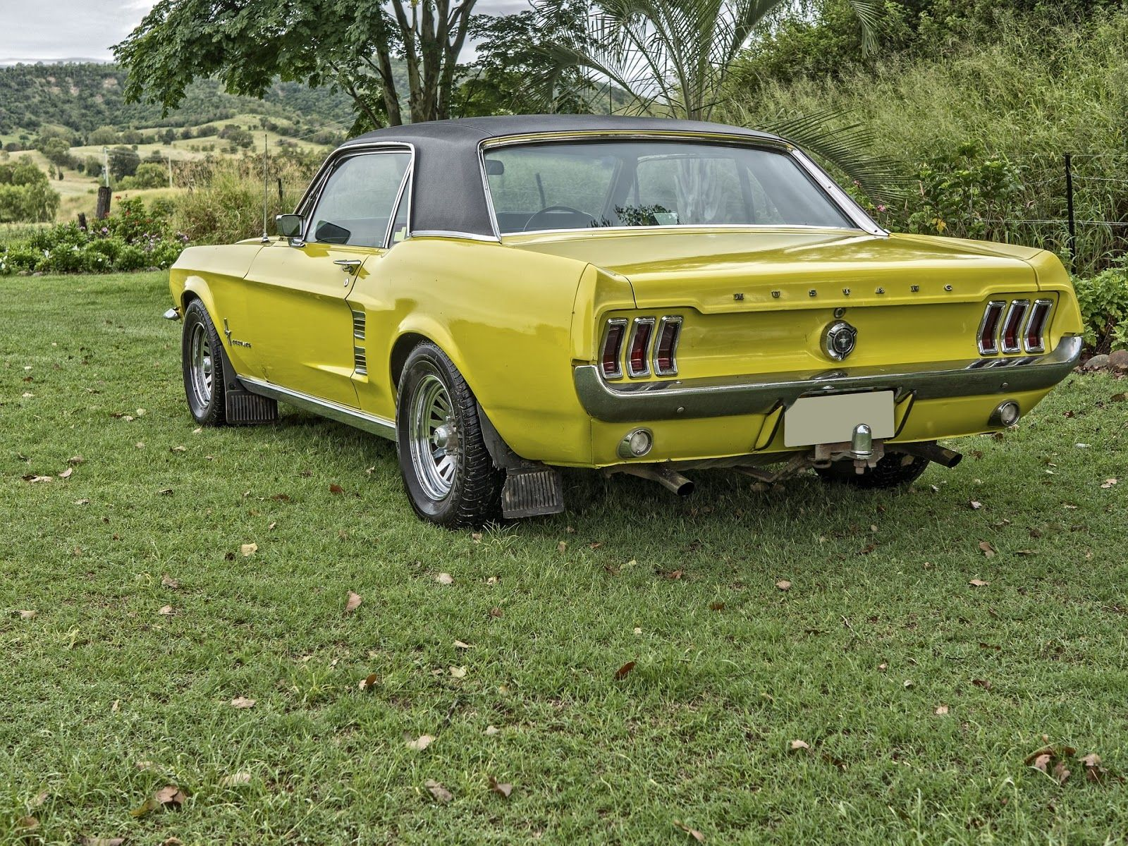 Classic Auto Trader | stang | Pinterest | Coffeecup