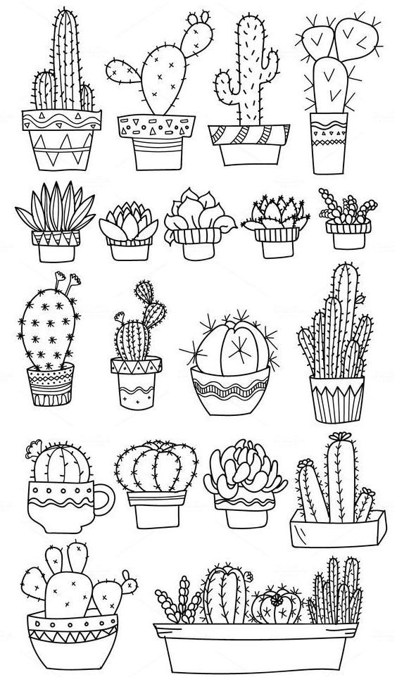 Cactus Coloring Page Colouring Bullet Journal Doodles Journal