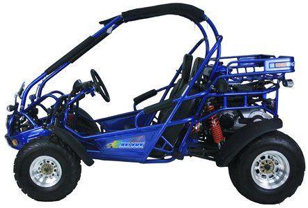 Amazon com: TRAILMASTER 300CC XRX GOKART: Automotive | money