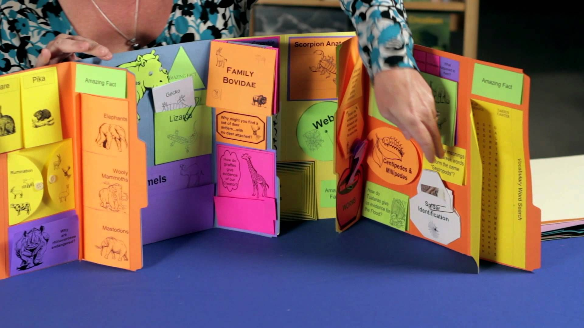 What is a Lapbook (Knowledge Box Central)