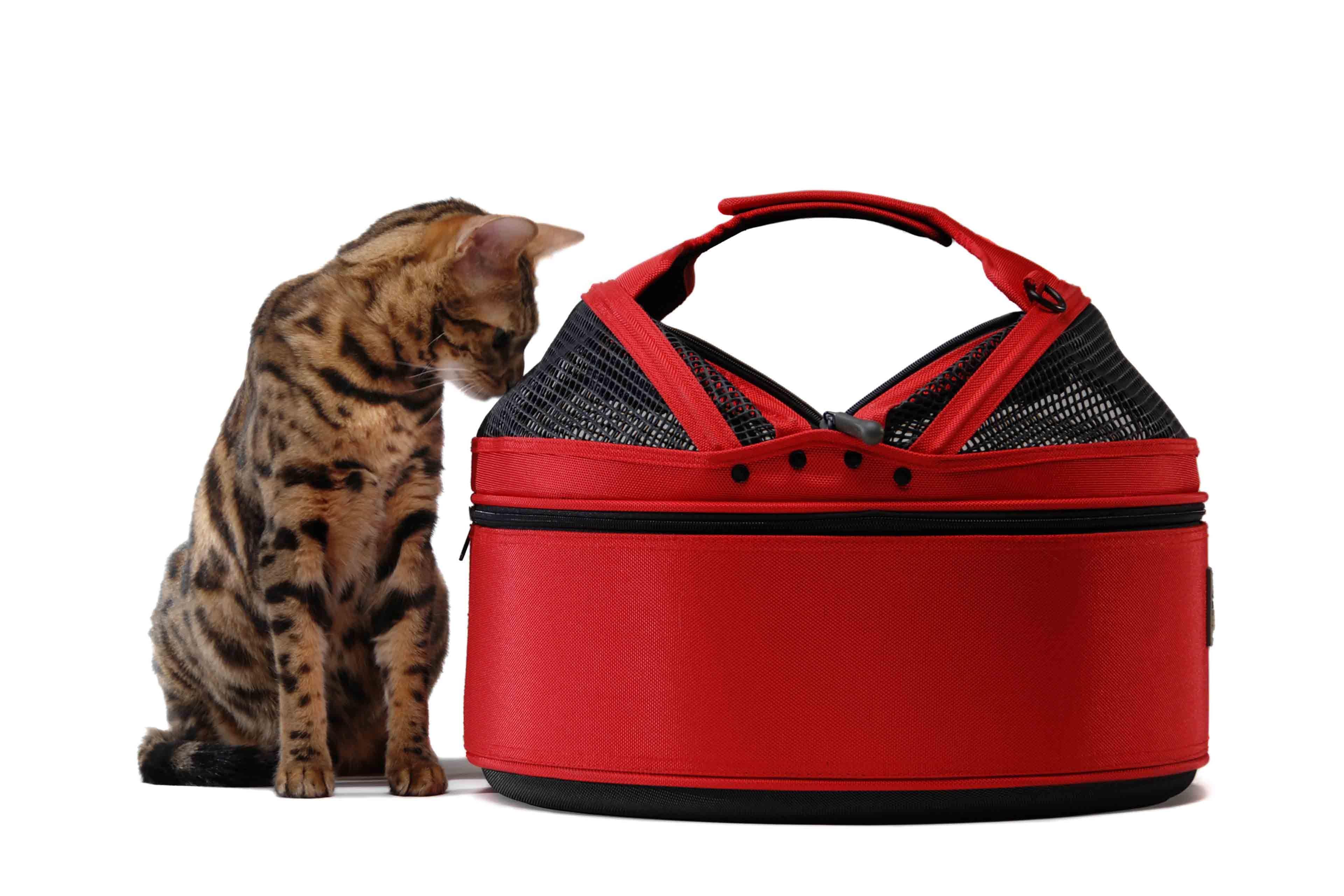 Sleepypod Cat carrier, Pet carriers, Dog carrier