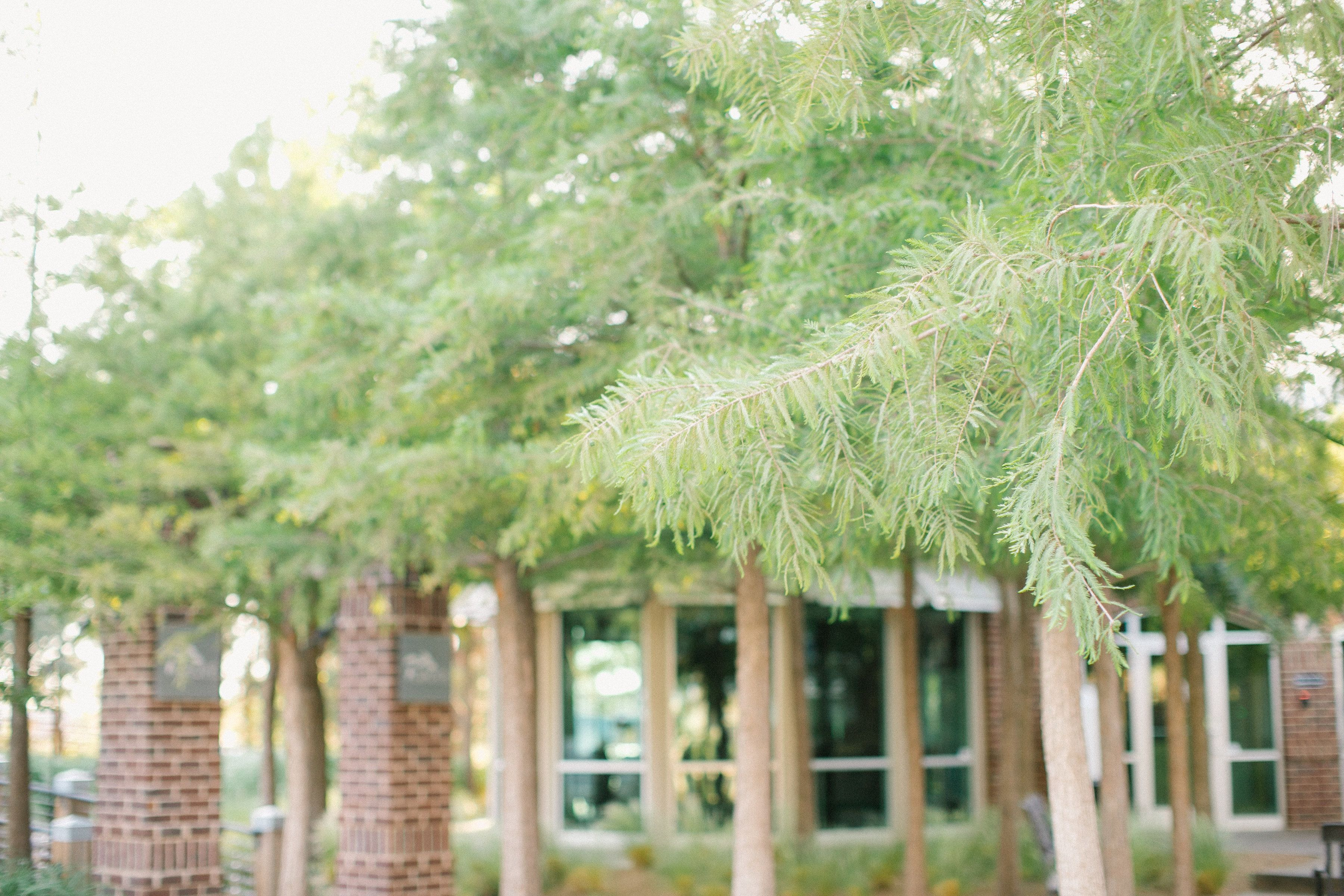 The Garden at The Willows Event Center - Lubbock, Texas. Photography ...