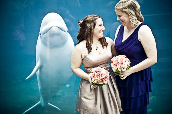 One Of The Most Beautiful Things In World JAGstudios Click Through To See More Same Love Wedding Photography Beluga Whale Aquarium