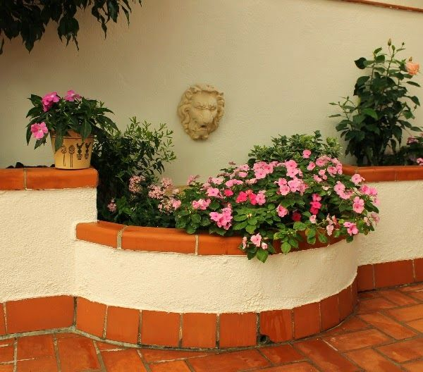 Guia de jardin blog de jardiner a y plantas jardiner a for Jardineria exterior con guijarros