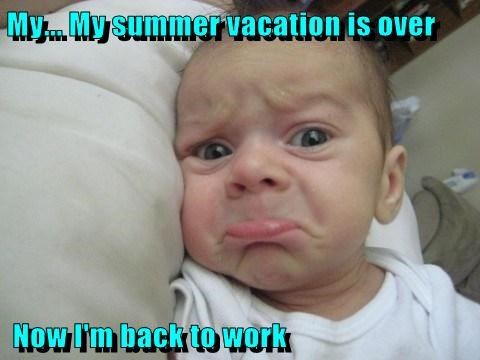 vacation is over meme - Google Search | Funny picture ...
