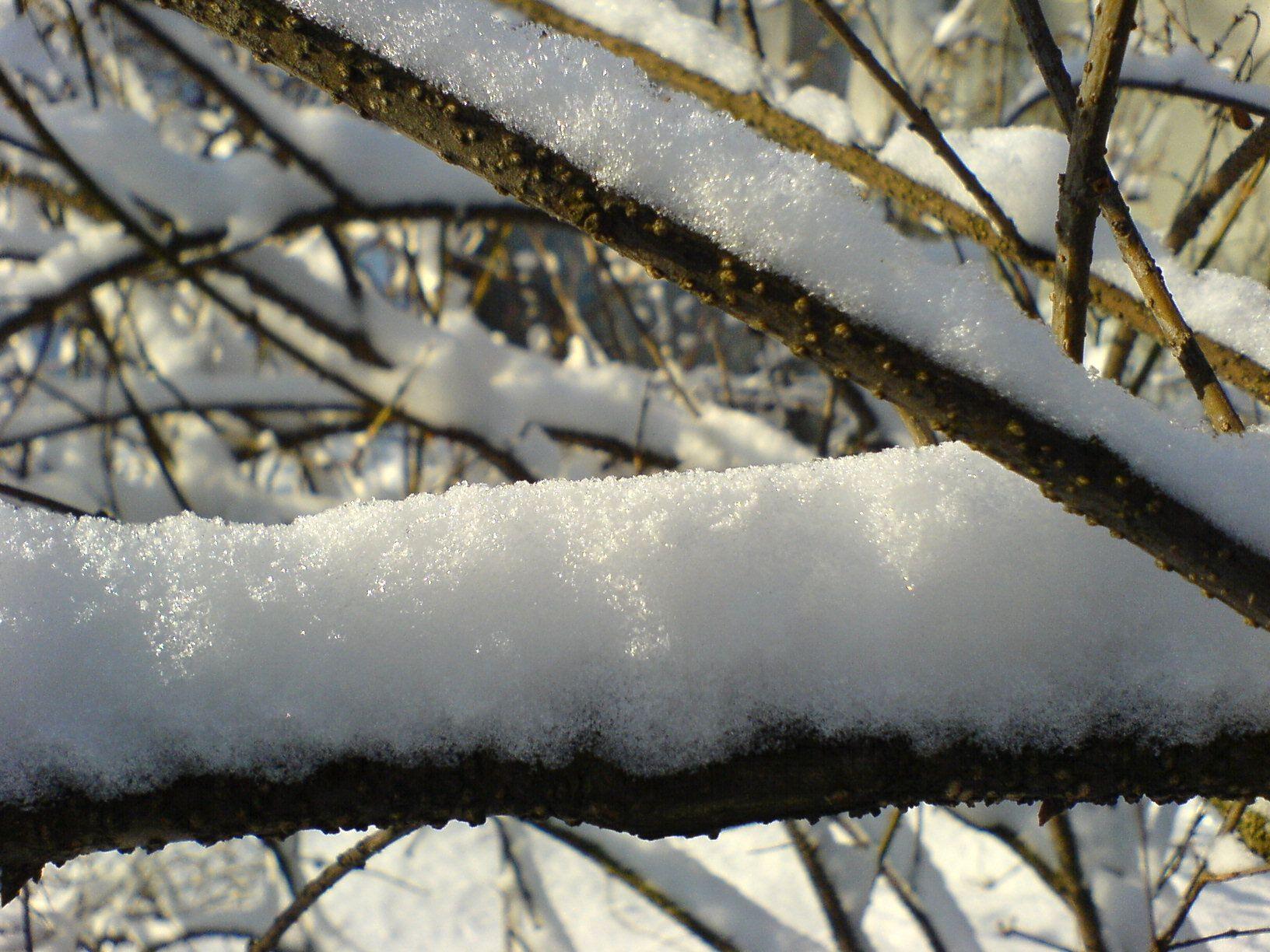 Snow Wikipedia, the free encyclopedia American poets