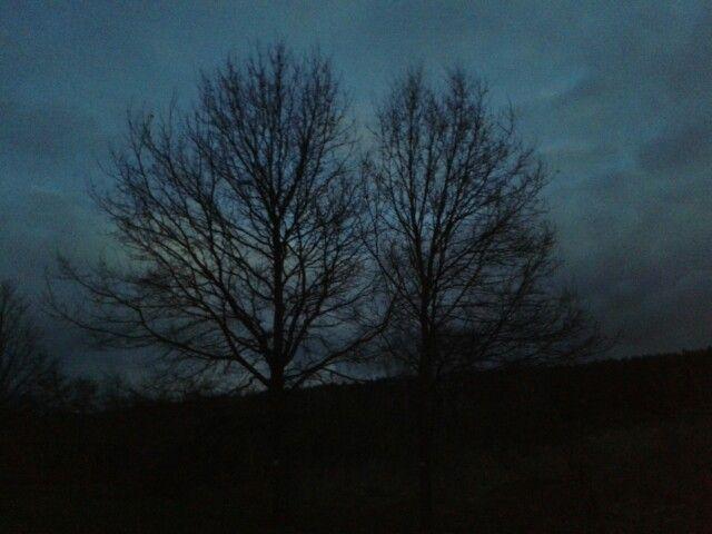 Escuridão.   C. Bömmels
