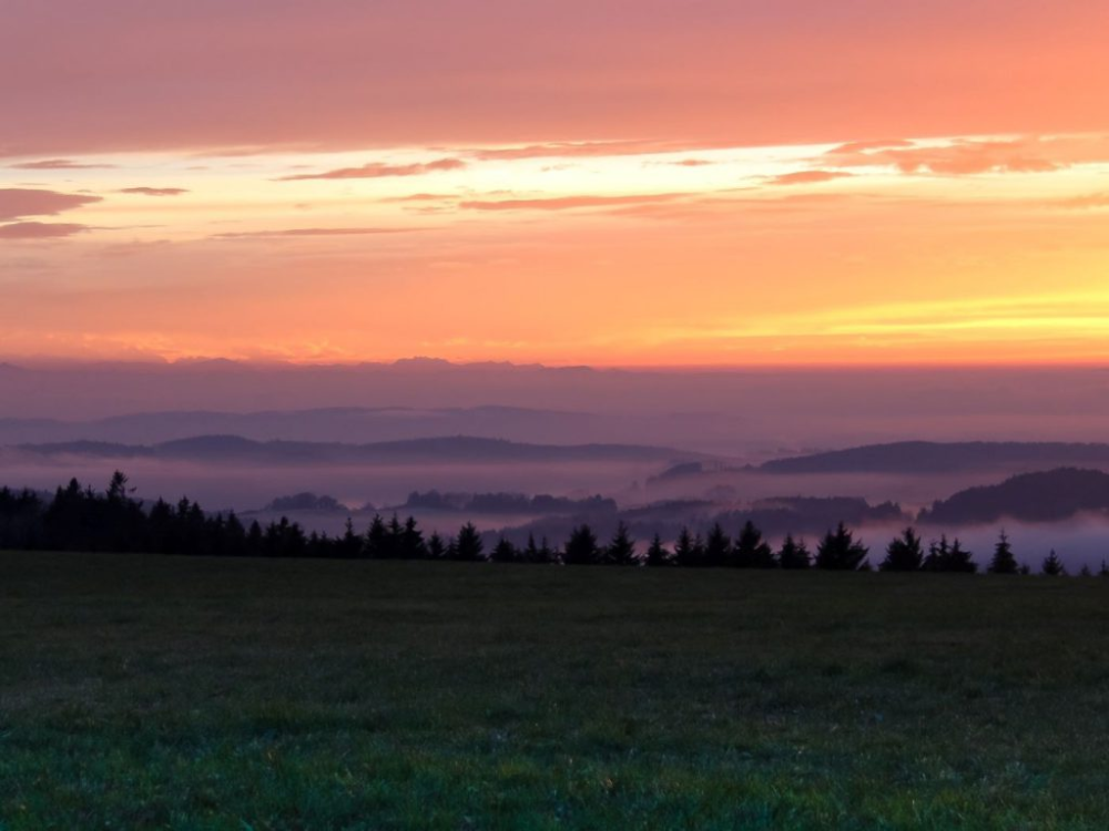 Bodensee urlaub single