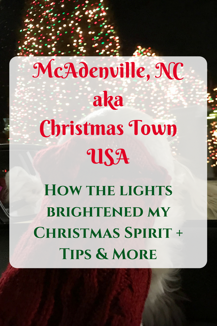 Light Up Your Christmas Spirit in Christmas Town USA | Pinterest ...