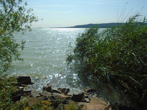 balaton, lake, and summer image