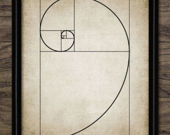 Fibonacci spiral geometry mathematics giclee art print by RNDMS