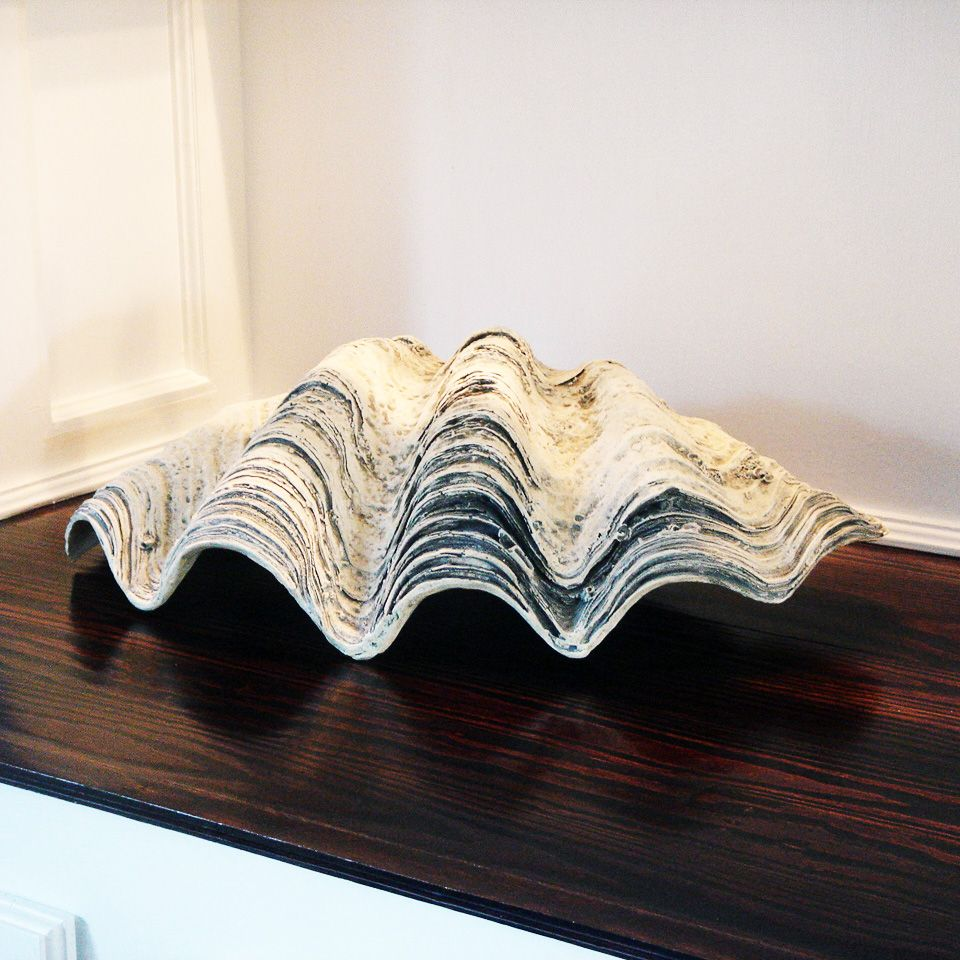Giant Clam Shell Details About Giant Clamshell 22 Clam Shell Seashell White Gray Clam Shell Giant Clam Shell Giant Clam