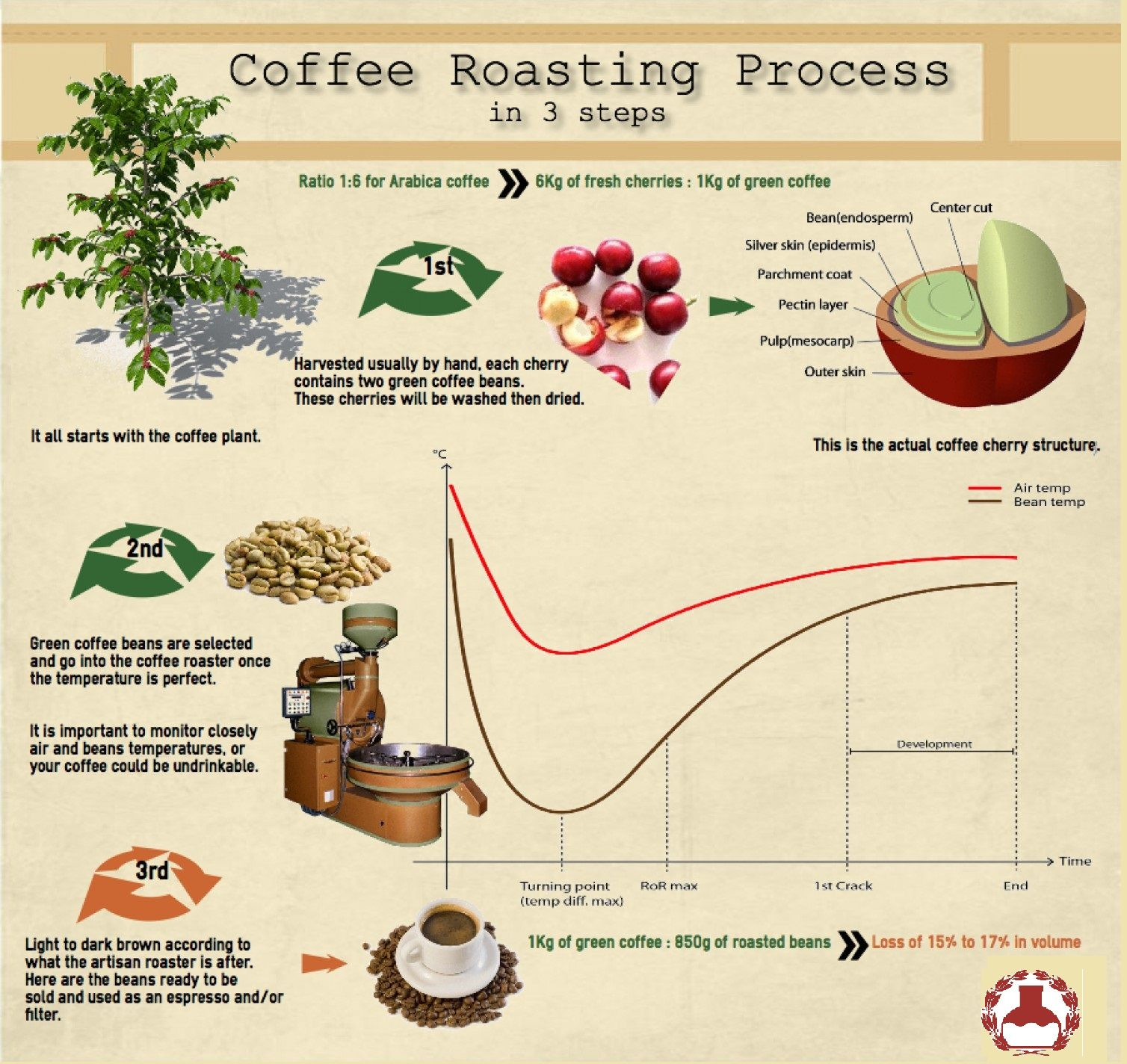 The physical and chemical properties of coffee beans