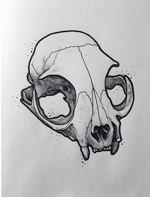 Pin By Lilly Bunny On Art Ideas In 2020 Skull Drawing Skull Art Tattoo Drawings