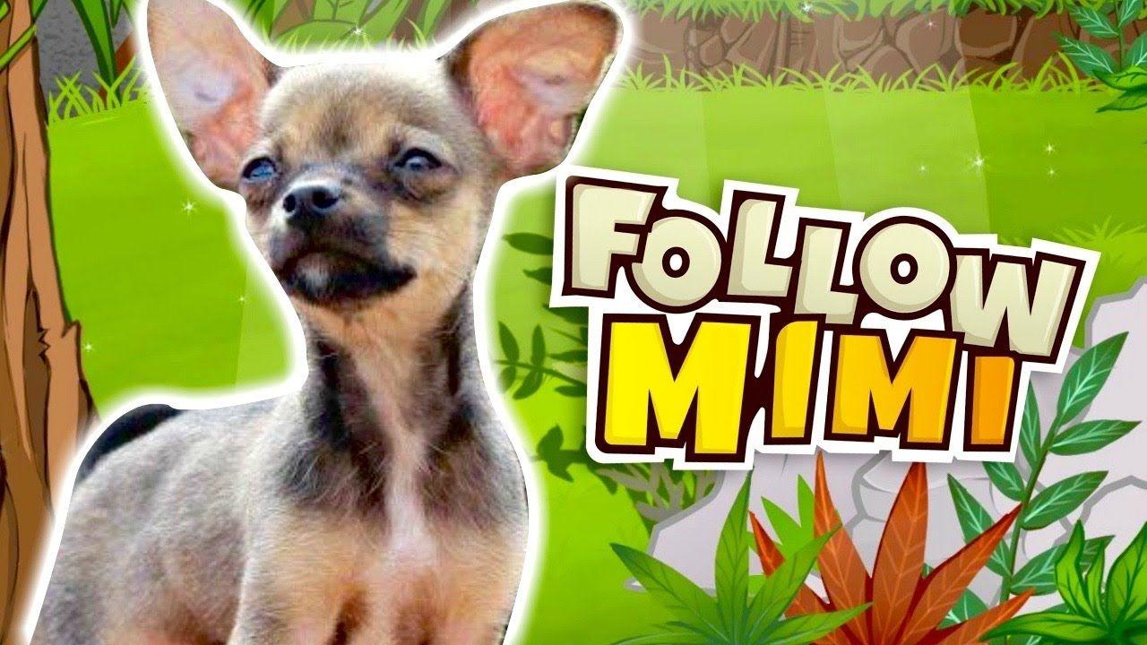 EL JUEGO EN HONOR A MIMI   Follow Mimi