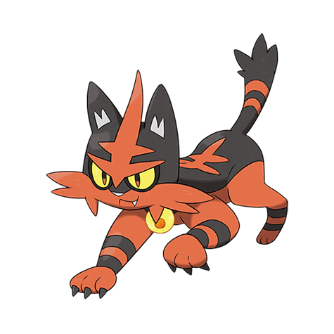 Torracat Pokemon Lua Pokemon Fofo Pokemon